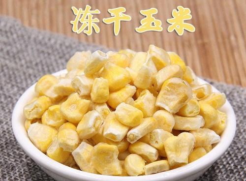 广东冻干玉米粒